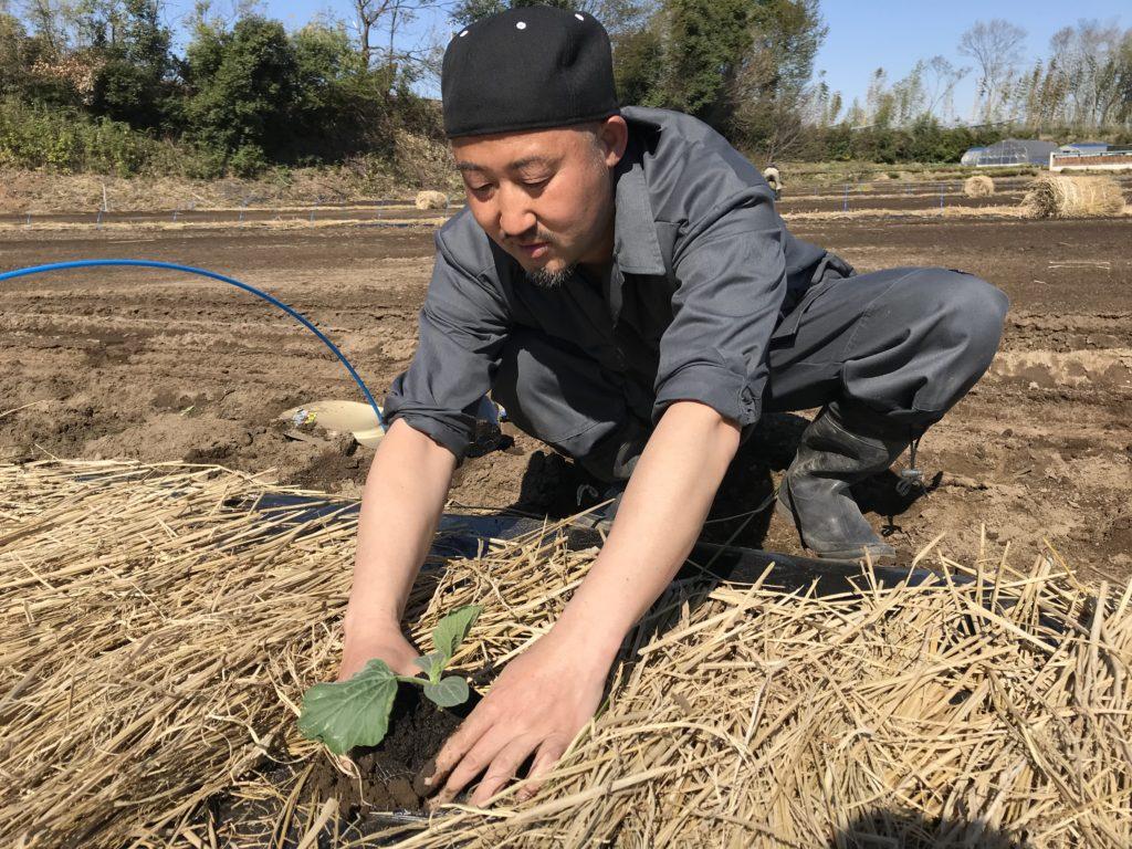 kanpyo_planting_2019_5
