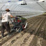 nira-planting-2019_0