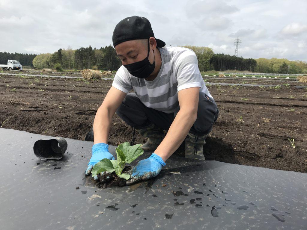 kanpyo-planting-2020-1