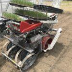 nira-planting-2020-1