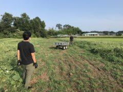 追尾型ユウガオの実収穫支援ロボットの実証実験
